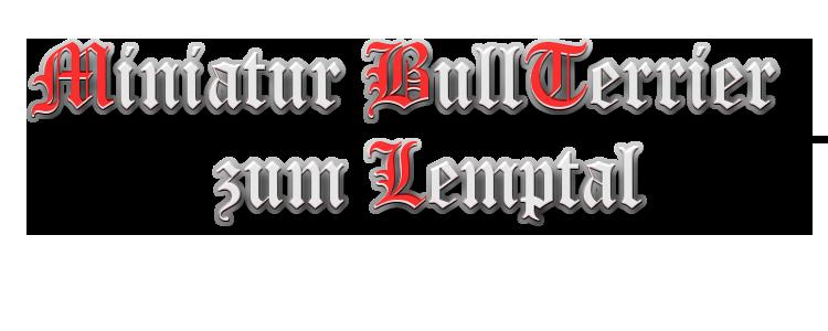 Lemptal Miniatur Bullterrier